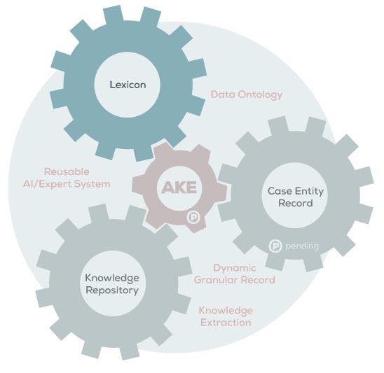 akelex-infographics-lexicon